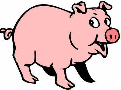 pig-thumb2